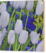 White Tulips Wood Print