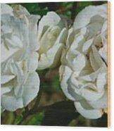 White Twin Flowers Wood Print