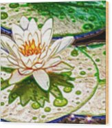 White Water Lilies Flower Wood Print