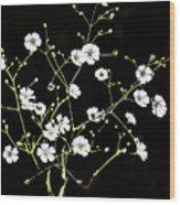 White Wild Flowers Wood Print
