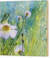 White Wild Poppies Wood Print