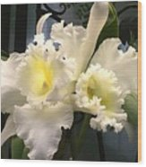 White With Yellow Orchids  Wood Print