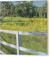 White Wood Fence And Wildflowers Wood Print