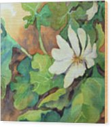 White Woodland Flower Wood Print
