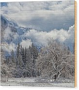 White Yosemite Wood Print