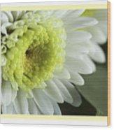 White Mum Card Wood Print