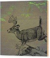 Whitetail Buck Wood Print