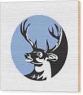 Whitetail Deer Buck Head Circle Retro Wood Print