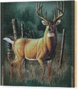 Whitetail Deer Wood Print by JQ Licensing