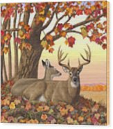 Whitetail Deer - Hilltop Retreat Wood Print by Crista Forest