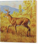 Whitetail Deer In Aspen Woods Wood Print by Crista Forest