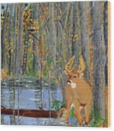 Whitetail Deer In Swamp Wood Print