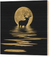 Whitetail Deer In The Moonlight Wood Print