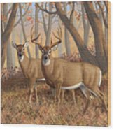 Whitetail Deer Painting - Fall Flame Wood Print by Crista Forest