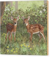 Whitetail Deer Twin Fawns Wood Print by Crista Forest