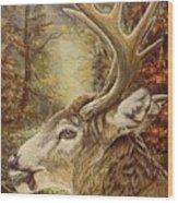 Whitetail Hideaway Wood Print