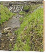 Whitewater Bridge And Dam Scene 13 Wood Print