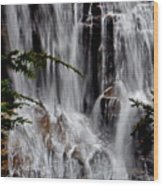 Whitewater Falls Lower Falls 001 Wood Print