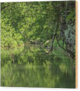 Whitewater River Scene 50 Wood Print