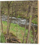 Whitewater River Spring 43 Wood Print