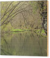 Whitewater River Spring 51 Wood Print