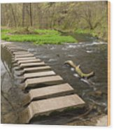 Whitewater River Spring 52 Wood Print