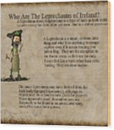 Who Are The Leprechyauns Of Ireland Wood Print