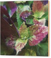 Who Needs Flowers Wood Print