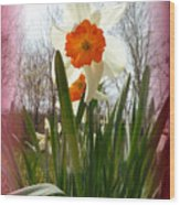 Who Planted Those Flowers Wood Print