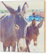 Who Wants A Blue Car When You Can Have Donkeys Wood Print