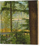 Whonnock Lake Through The Trees Wood Print