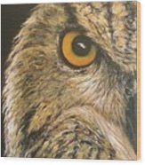 Whooo Goes There Wood Print
