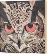 Whoot Owl Wood Print