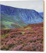 Wicklow Heather Carpet Wood Print