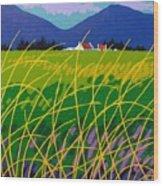 Wicklow Meadow Ireland Wood Print