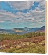 Wicklow Mountains  Wood Print