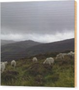 Wicklow Mountains View Wood Print