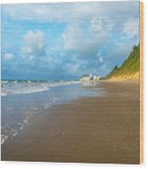 Wide Beach And Nature Wood Print
