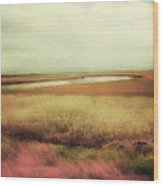 Wide Open Spaces Wood Print by Amy Tyler