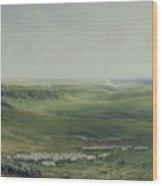 Wide Pastures Wood Print