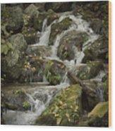 Wigwam Falls Blue Ridge Parkway Wood Print