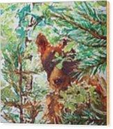 Wild Bear Peek-a-boo Watercolour Wood Print
