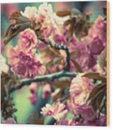 Wild Blossoms Wood Print