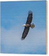 Wild Blue Yonder Wood Print