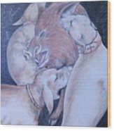 Wild Boar And Dogs Wood Print