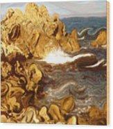 Wild California Coast - Modern Art Wood Print