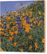 Wild California Poppies And Lupine Wood Print