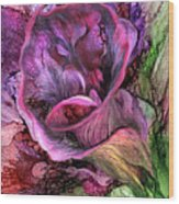 Wild Calla Wood Print