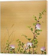 wild caper plant Capparis spinosa Wood Print