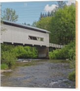 Wild Cat Bridge No. 2 Wood Print